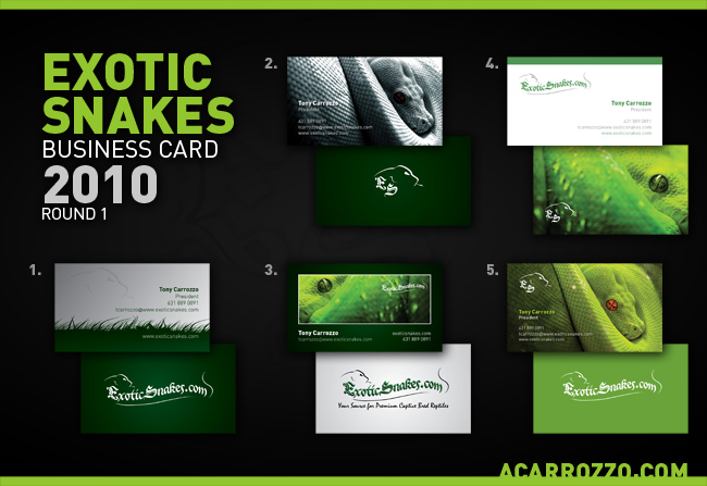 Exotic Snakes Business Card - Step 1