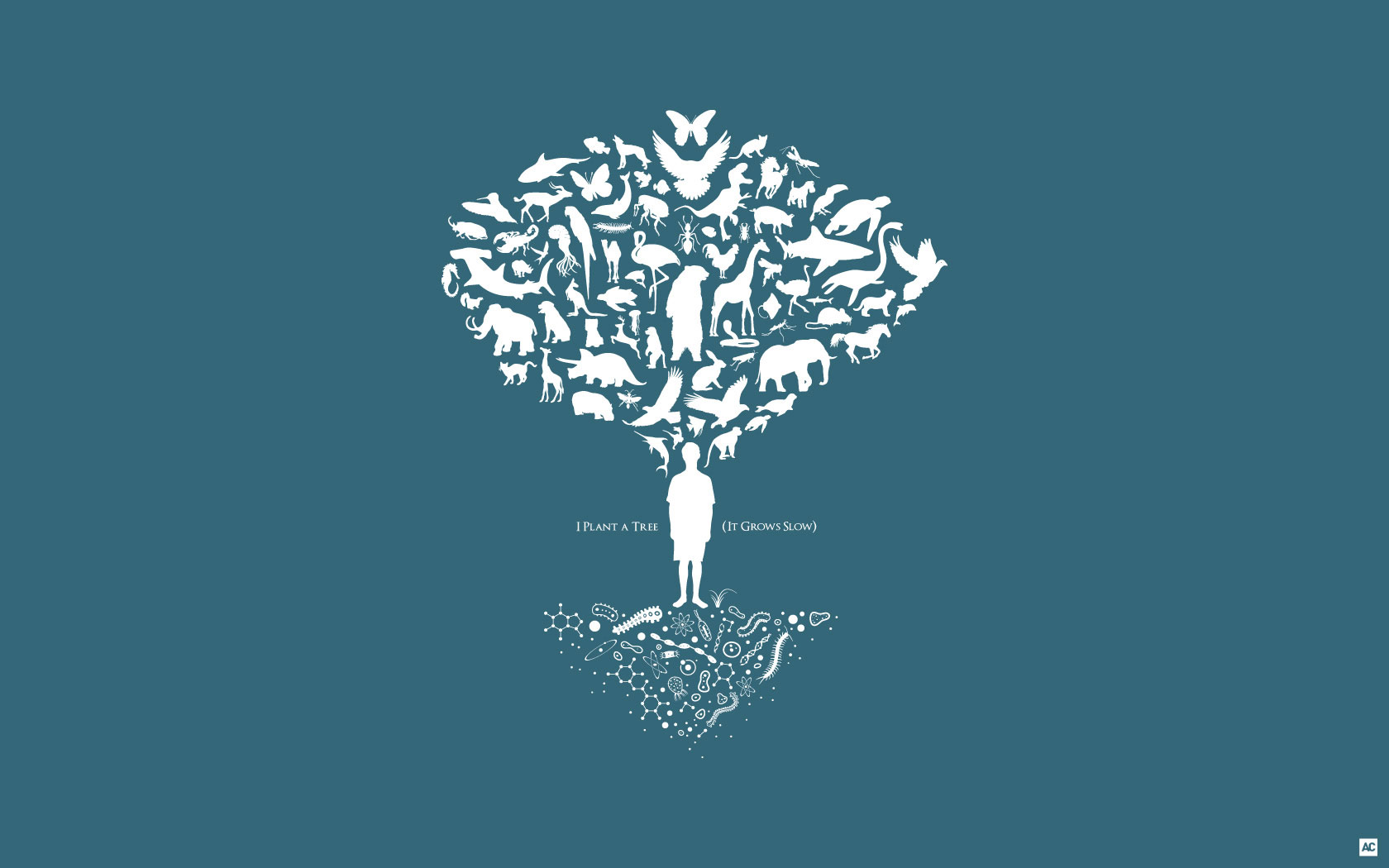 acarrozzo Wallpaper Design - Tree of Life, I plant a tree, it grows slow